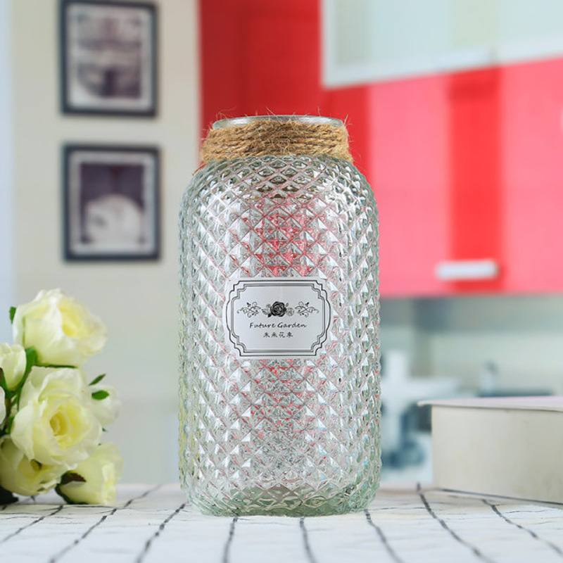 Home Decoration Clear Glass Vase for Flower