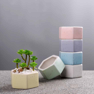Succulent Flowerpot Colorful Hexagonal Pot Succulent Ceramic Pot